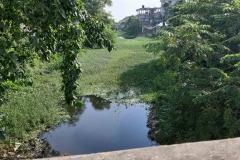 Ichamati-River-Pabna-Bangladesh-as-of-July-2020-11