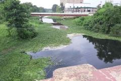 Ichamati-River-Pabna-Bangladesh-as-of-July-2020-13