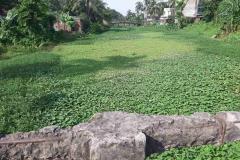 Ichamati-River-Pabna-Bangladesh-as-of-July-2020-15