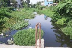 Ichamati-River-Pabna-Bangladesh-as-of-July-2020-22