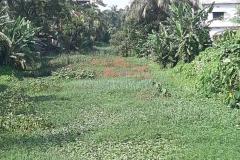 Ichamati-River-Pabna-Bangladesh-as-of-July-2020-25