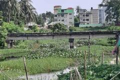 Ichamati-River-Pabna-Bangladesh-as-of-July-2020-26