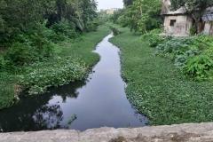Ichamati-River-Pabna-Bangladesh-as-of-July-2020-29