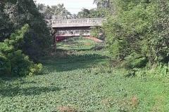 Ichamati-River-Pabna-Bangladesh-as-of-July-2020-31