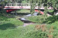 Ichamati-River-Pabna-Bangladesh-as-of-July-2020-34