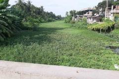 Ichamati-River-Pabna-Bangladesh-as-of-July-2020-36