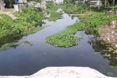 Ichamati-River-Pabna-Bangladesh-as-of-July-2020-40