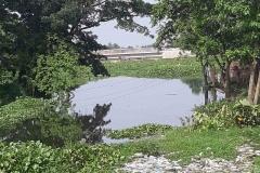 Ichamati-River-Pabna-Bangladesh-as-of-July-2020-8