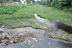 Ichamati-River-Pabna-Bangladesh-July-2021-1