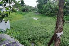 Ichamati-River-Pabna-Bangladesh-July-2021-10