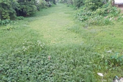 Ichamati-River-Pabna-Bangladesh-July-2021-11