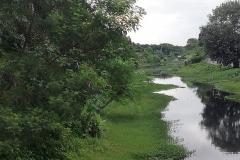 Ichamati-River-Pabna-Bangladesh-July-2021-13