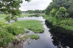 Ichamati-River-Pabna-Bangladesh-July-2021-15