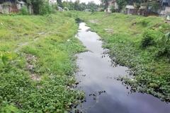 Ichamati-River-Pabna-Bangladesh-July-2021-17
