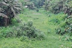 Ichamati-River-Pabna-Bangladesh-July-2021-18