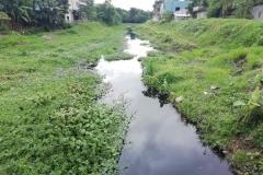Ichamati-River-Pabna-Bangladesh-July-2021-19
