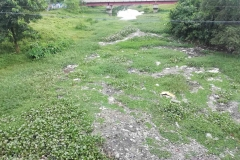 Ichamati-River-Pabna-Bangladesh-July-2021-20