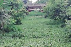 Ichamati-River-Pabna-Bangladesh-July-2021-23
