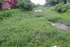 Ichamati-River-Pabna-Bangladesh-July-2021-25