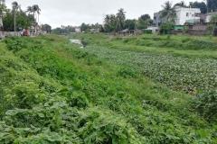 Ichamati-River-Pabna-Bangladesh-July-2021-26