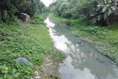 Ichamati-River-Pabna-Bangladesh-July-2021-34