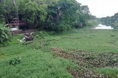 Ichamati-River-Pabna-Bangladesh-July-2021-35