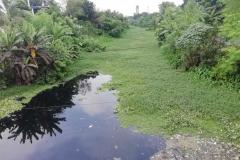 Ichamati-River-Pabna-Bangladesh-July-2021-36
