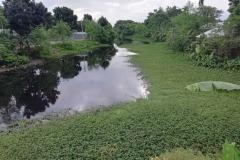 Ichamati-River-Pabna-Bangladesh-July-2021-39