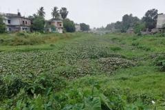 Ichamati-River-Pabna-Bangladesh-July-2021-8