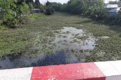 Ichamati-River-Pabna-Bangladesh-as-of-November-2020-16