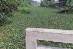 Ichamati-River-Pabna-Bangladesh-as-of-November-2020-18