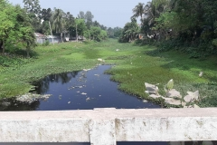 Ichamati-River-Pabna-Bangladesh-as-of-November-2020-19