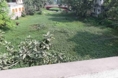 Ichamati-River-Pabna-Bangladesh-as-of-November-2020-28