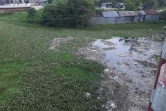 Ichamati-River-Cleaning-Pabna-Bangladesh-October-2020-17