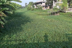 Ichamati-River-Cleaning-Pabna-Bangladesh-October-2020-24