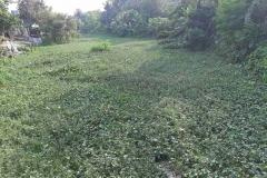 Ichamati-River-Cleaning-Pabna-Bangladesh-October-2020-29