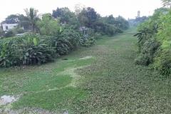 Ichamati-River-Cleaning-Pabna-Bangladesh-October-2020-39