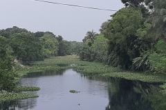 Ichamati-River-Cleaning-Pabna-Bangladesh-October-2020-8