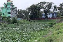 Ichamati-River-Pabna-Bangladesh-Septemter2020-11