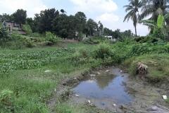 Ichamati-River-Pabna-Bangladesh-Septemter2020-2