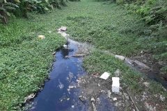 Ichamati-River-Pabna-Bangladesh-Septemter2020-22