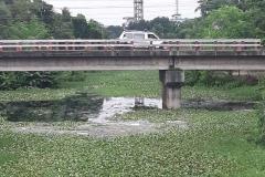 Ichamati-River-Pabna-Bangladesh-Septemter2020-26