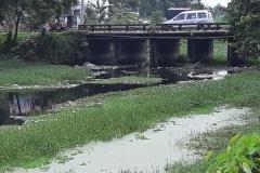 Ichamati-River-Pabna-Bangladesh-Septemter2020-28