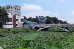 Ichamati-River-Pabna-Bangladesh-Septemter2020-4