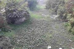 Ichamati-River-Pabna-Bangladesh-as-of-January-2021-10