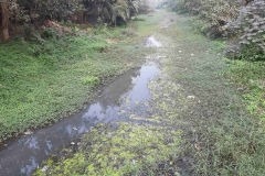 Ichamati-River-Pabna-Bangladesh-as-of-January-2021-12