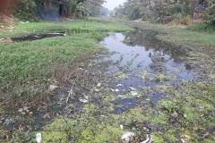 Ichamati-River-Pabna-Bangladesh-as-of-January-2021-13