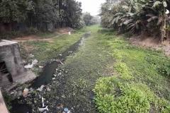 Ichamati-River-Pabna-Bangladesh-as-of-January-2021-15