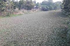 Ichamati-River-Pabna-Bangladesh-as-of-January-2021-22