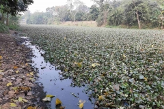 Ichamati-River-Pabna-Bangladesh-as-of-January-2021-3